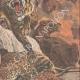 DETTAGLI 04 | Morte degli animali della menagerie nel fuoco alla Esposizione di Bruxelles - Belgio - 1910