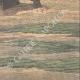 DETALJER 06 | Träskmark nära Drusenheim - Frankrike - 1910