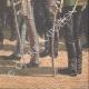 DETTAGLI 06 | Il nastro tricolore proibito sulle tombe dei soldati francesi - Metz - 1910