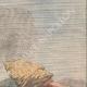 DETALJER 03 | En arbetare faller i Garda-sjön nära Tremosinine - Italien - 1910