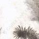WIĘCEJ 03 | Spalanie w Salmyeh - Wojny Napoleońskie (Egipt)