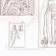 DETALJER 04 | Målningar och Skulpturer från Egypten