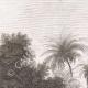 DETALLES 01 | Comida después del encuentro de los Jeques en Abou-Manah (Egipto)