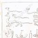 DÉTAILS 01 | Hiéroglyphes (Egypte)
