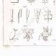 DÉTAILS 04 | Hiéroglyphes (Egypte)