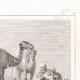 DETAILS 07 | Denon visitando as ruínas de Hieracômpolis (Egito)