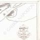 DETALLES 05 | Plano de la Batalla de las Pirámides - Mamelucos - 1798 (Egipto)