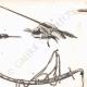 Einzelheiten 02 | Mamlouken-Waffe (Ägypten)
