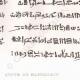 DETTAGLI 04 | Manoscritto - Mummia (Egitto)
