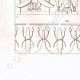 DETALLES 04 | Frescos - Arte del Antiguo Egipto (Egipto)