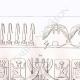 DÉTAILS 02 | Frises emblématiques - Art de l'Egypte antique (Egypte)