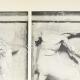 DETTAGLI 02 | Metope del Partenone - Centauro (Grecia)