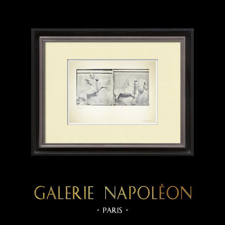 Gravures Anciennes & Dessins | Métopes du Parthénon - Face sud - V et VI - Centaure (Grèce) | Héliogravure | 1912