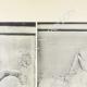DÉTAILS 02 | Métopes du Parthénon - Face sud - V et VI - Centaure (Grèce)