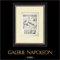 Métopa do Partenão - Centauro - Cabeças (Grécia) | Heliogravura original. Anónima. 1912