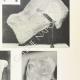DETTAGLI 04 | Metope del Partenone - Frammenti (Grecia)