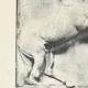 Einzelheiten 02 | Parthenonmetope - Kentaur (Griechenland)