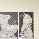 DETAILS 03 | Gezicht op het Parthenon - West Fronton - Kekrops - Pandrosos (Griekenland)