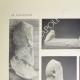 DETAILS 01 | View of the Parthenon - West pediment (Greece)