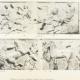 DÉTAILS 04 | Parthénon - Frise ionique de la Cella - Face ouest - Vue d'ensemble - Pl. 76