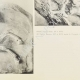 Einzelheiten 04 | Parthenon - Ionenfries von Cella - Südlich Seite - Pl. 93