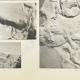 DETALJER 04 | Parthenon - Ionisk fris i Cella - Syd - Pl. 94