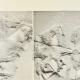 Einzelheiten 02 | Parthenon - Ionenfries von Cella - Südlich Seite - Pl. 97