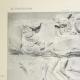 DÉTAILS 01   Parthénon - Frise ionique de la Cella - Face sud - Pl. 95