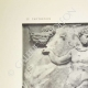 DETALLES 01 | Partenón - Friso jónico de la Cella - Lado norte - Pl. 103