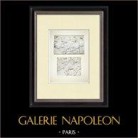 Partenone - Fregio ionico della Cella - Lato nord - Pl. 104