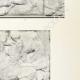 Einzelheiten 04 | Parthenon - Ionenfries von Cella - Nord Seite - Pl. 104
