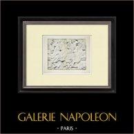 Partenone - Fregio ionico della Cella - Lato nord - Pl. 106
