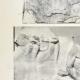 Einzelheiten 02   Parthenon - Ionenfries von Cella - Nord Seite - Pl. 113
