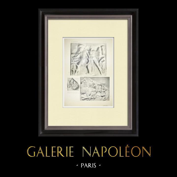 Stare Grafiki & Rysunki | Partenon - Fryz Jonowy Celli - Strona Północna - pl. 114 | Heliograwiura | 1912