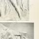WIĘCEJ 04 | Partenon - Fryz Jonowy Celli - Strona Północna - pl. 114