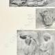 Einzelheiten 02 | Parthenon - Ionenfries von Cella - Ostseite - Pl. 127