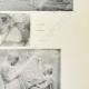 Einzelheiten 04 | Parthenon - Ionenfries von Cella - Ostseite - Pl. 127