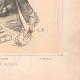 DÉTAILS 06   Portrait de Mounet-Sully (1841-1916)