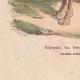 DÉTAILS 07   Régiment de dromadaires - Cavalerie - Bonaparte - Campagne d'Egypte (1799)