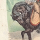 DÉTAILS 02 | Officier des Chasseurs à cheval de la Garde Impériale (1812)