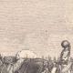 DÉTAILS 01   Soldat Napoléonien - Uniforme - Carabinier à cheval - Cuirassier - Premier Empire