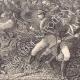 DÉTAILS 06 | Charge des dragons de l'Impératrice à Saint-Dizier (26 mars 1814)