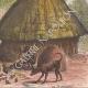DÉTAILS 06   Village du peuple Diour en hiver - Bahr al-Ghazal (Soudan du Sud)