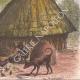 DÉTAILS 08   Village du peuple Diour en hiver - Bahr al-Ghazal (Soudan du Sud)