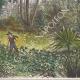DÉTAILS 04 | Forêt de la région du Nil Supérieur (Soudan du Sud)