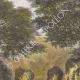 DÉTAILS 02 | Paysage près de la rivière Kibali - Forêt galerie (Afrique Centrale)