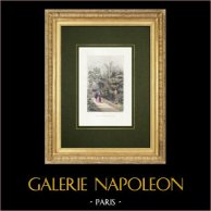 Jardín de Plantas de París - Jardín botánico - Invernadero | Grabado original en talla dulce sobre acero. Anónimo. Agua-coloreado a mano. 1842