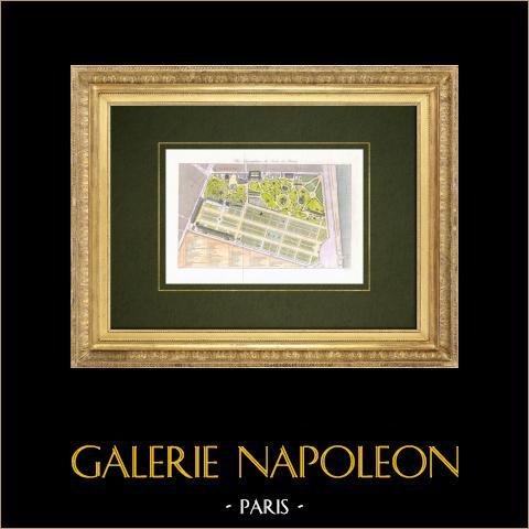 Pianta del Jardin des Plantes a Parigi  | Stampa calcografica originale a bulino su acciaio disegnata da Beloeuf, incisa da Vigneulle. Acquerellata a mano. 1842
