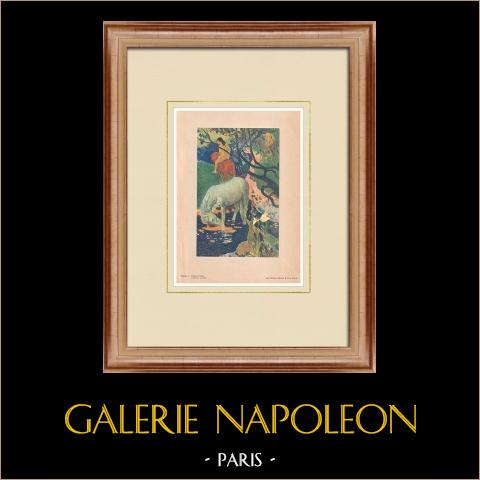 Post-impressionisme - le Cheval Blanc - het Witte Paard (Paul Gauguin) |