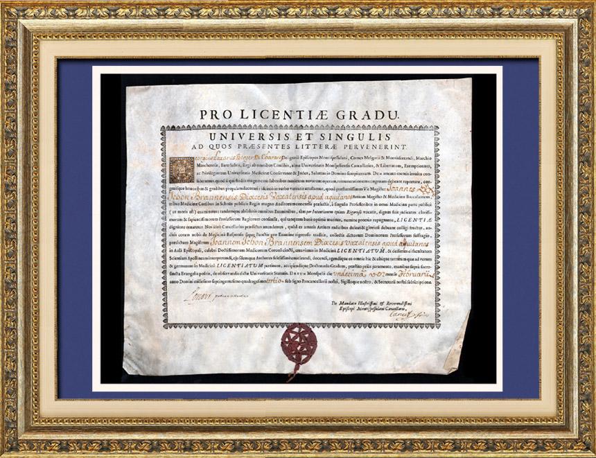 Antiguo Título de Medicina sobre Pergamino - Reinado de Luis XV de Francia - 1743 - Georges Lazare Berger de Charency - PRO LICENTIAE GRADU   Título de Medicina redactado en latín sobre pergamino datado del 11 de febrero de 1743.
